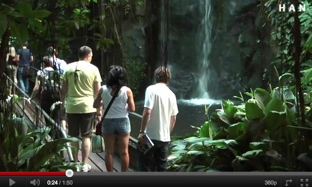 Videoblog: Kijk naar de natuur als inspiratiebron