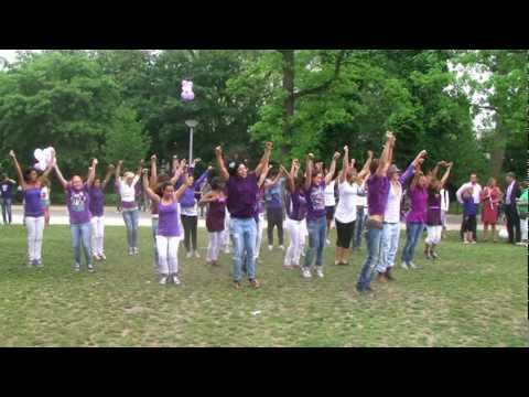 Kippevel: Flashmob het Vondelpark kleurt paars
