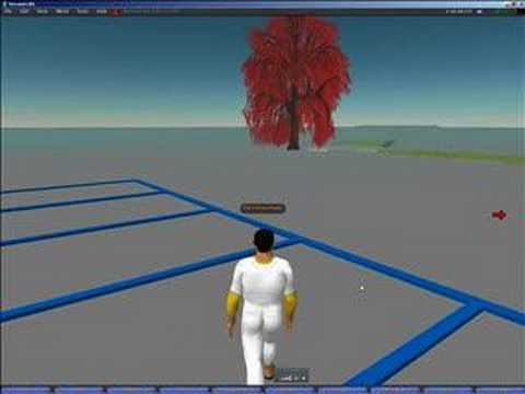 Harvard training in Second Life (mijn screencast)