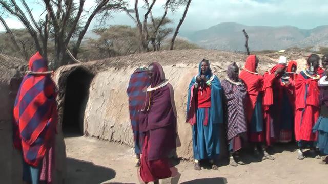 Videoblog: Safari Tanzania en Zanzibar 2010